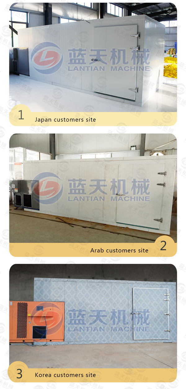 apricot drying machine manufacturer