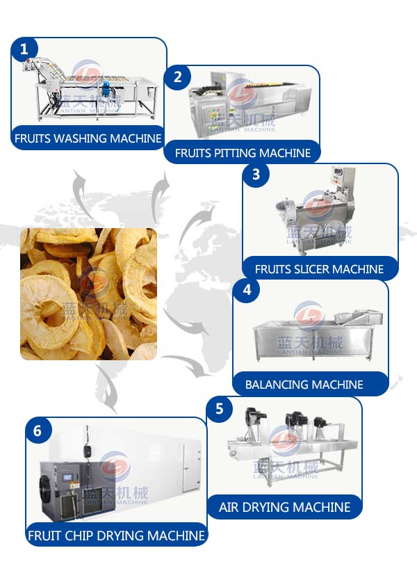 apricot drying equipment machine