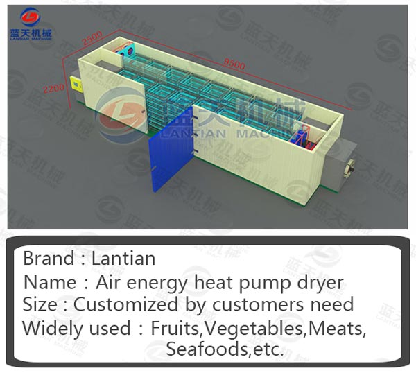 Structure diagram of sea food dryer machine